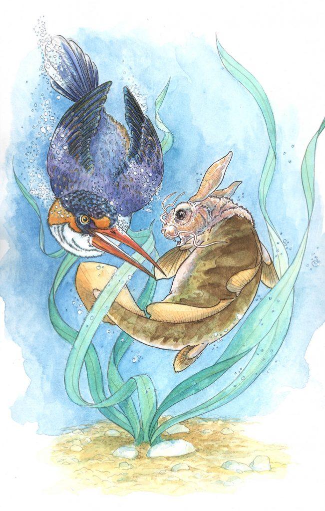 bunny fish illustration